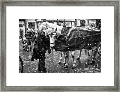 Winter Day In Salzburg Framed Print by John Rizzuto