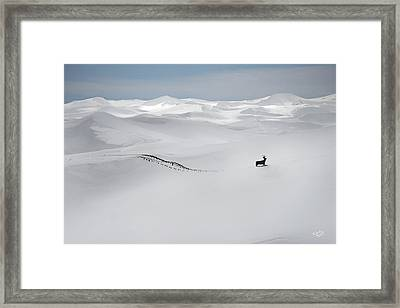Winter Deer Framed Print by Leland D Howard