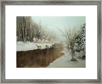 Winter Deer Run Framed Print