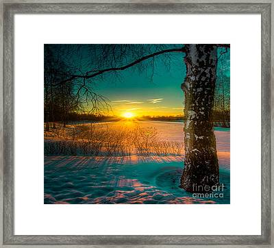 Winter Delight In British Columbia Framed Print by Rod Jellison