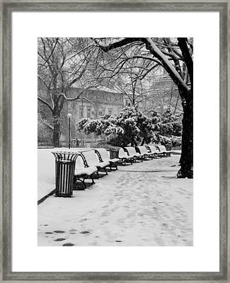 Winter Down The Path Framed Print by Rae Tucker