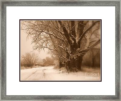 Winter Dream With Framing Framed Print