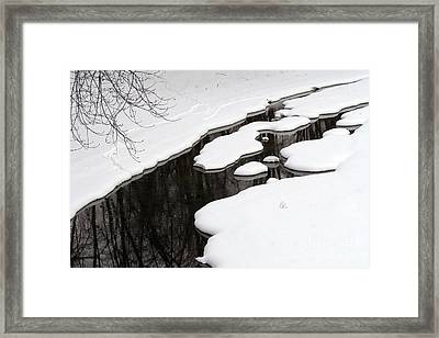 Framed Print featuring the photograph Winter Dreams by Paula Guttilla
