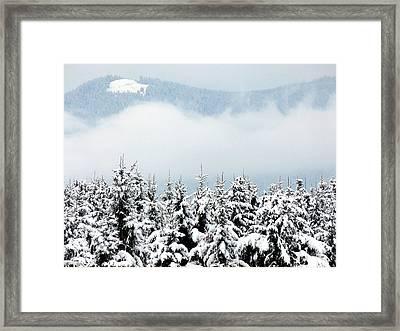 Winter Dreamworld Framed Print by Will Borden