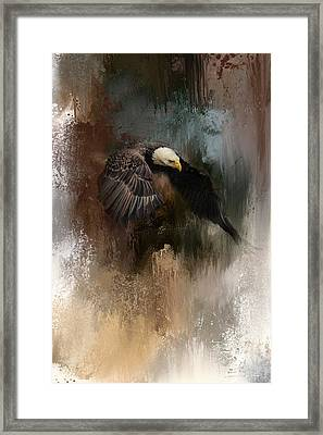 Winter Eagle 2 Framed Print by Jai Johnson
