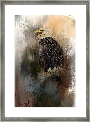 Winter Eagle 3 Framed Print