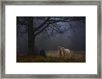 Winter Evening Framed Print by Ron Jones