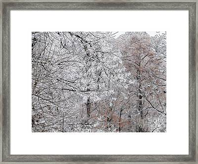 Winter Fantasy Framed Print