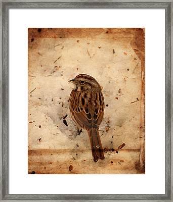 Winter Feast I - Textured Framed Print by Angie Tirado