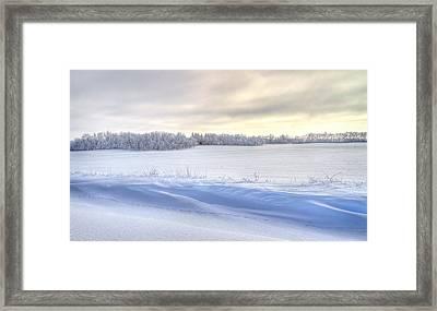 Winter Field Framed Print