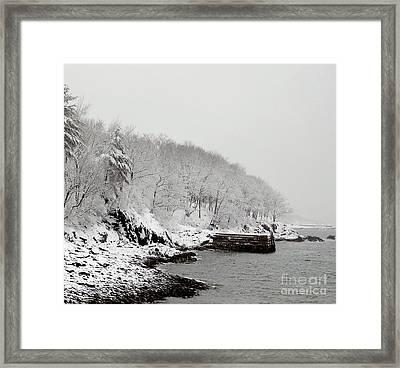 Winter Finery Framed Print by Faith Harron Boudreau