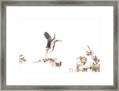 Winter Flight Framed Print by Tom and Pat Cory