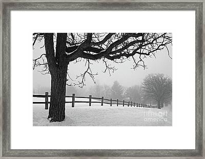 Winter Fog Framed Print by Kevin McCarthy