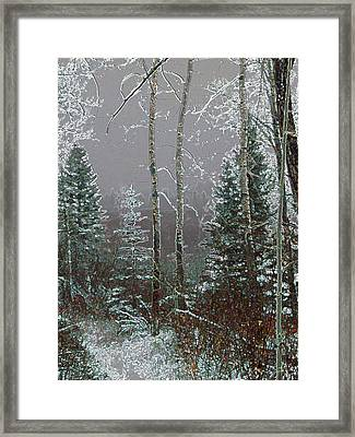 Framed Print featuring the digital art Winter Fog by Stuart Turnbull