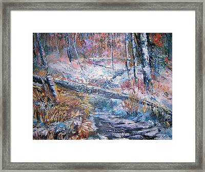 Winter Forest Framed Print by Judy Groves