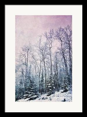 Wintertime Photographs Framed Prints