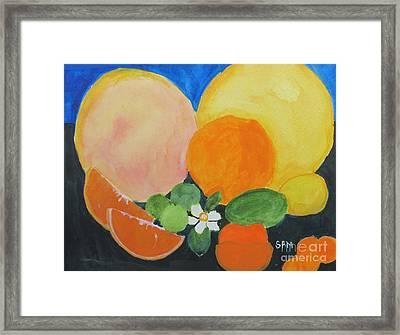 Winter Fruit Framed Print by Sandy McIntire