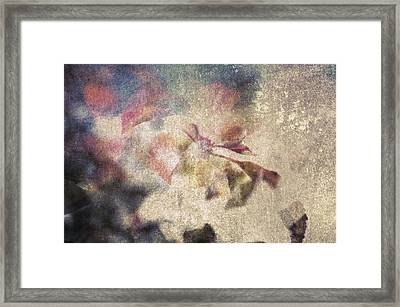 Winter Fugue Framed Print