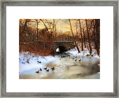 Winter Geese Framed Print by Jessica Jenney