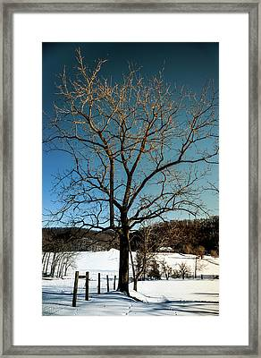 Framed Print featuring the photograph Winter Glow by Karen Wiles
