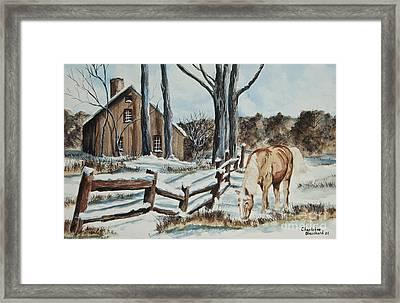 Winter Grazing  Framed Print
