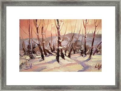 Winter Grove Framed Print