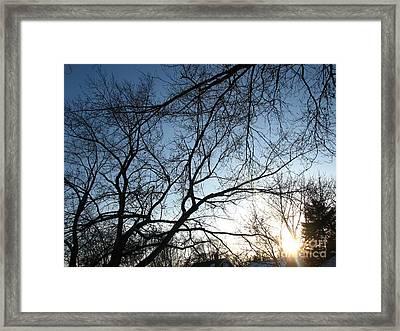 Winter Haze Framed Print