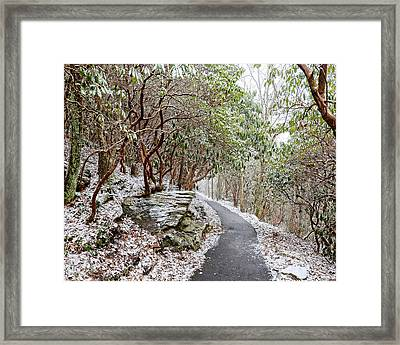 Winter Hiking Trail Framed Print by Susan Leggett