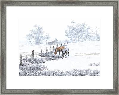 Winter Holiday At The Farm Framed Print