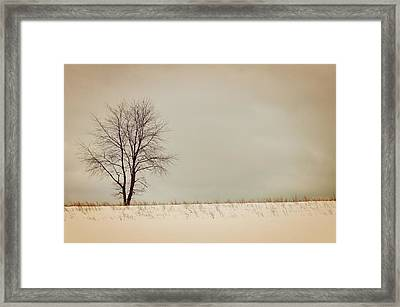 Winter Horizon  Framed Print by JAMART Photography