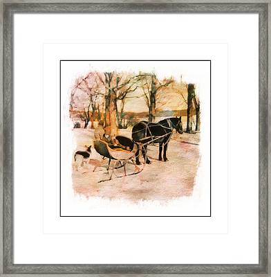 Winter Horse Sled Framed Print