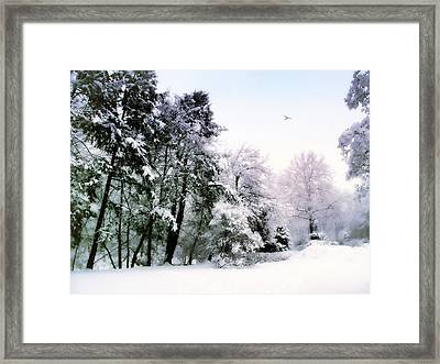 Winter Impressions Framed Print by Jessica Jenney