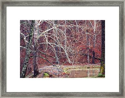 Winter In Arkansas Framed Print by Fred Lassmann