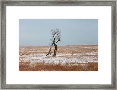 Winter In Kansas Framed Print