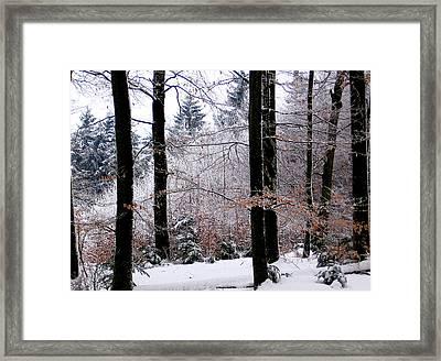 Winter In Krauchthal II Framed Print by David Ritsema