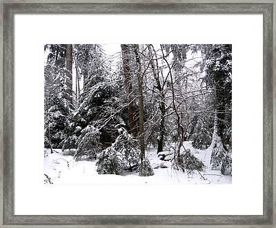 Winter In Krauchthal IIi Framed Print by David Ritsema