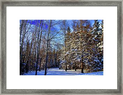 Winter In Maine Framed Print by Gary Smith