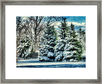 Winter In New England Framed Print by Judy Palkimas