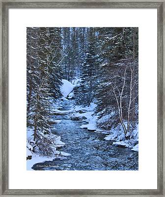 Winter In The Black Hills Framed Print by Dave Clark