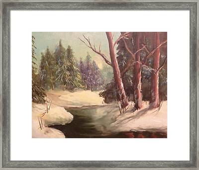 Winter In The Country Framed Print by Donna McCartney