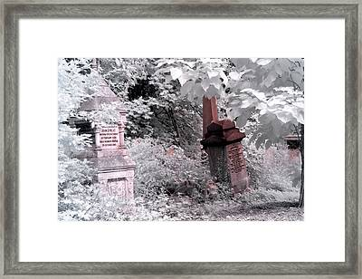 Winter Infrared Cemetery Framed Print by Helga Novelli
