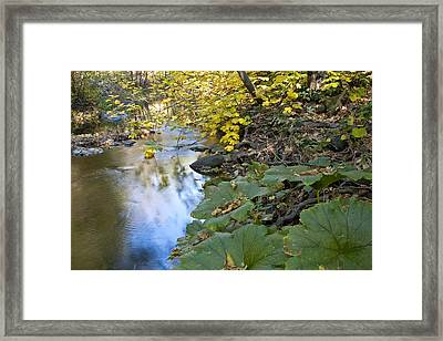 Winter Is Coming On Rock Creek Framed Print by Charlie Osborn