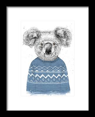 Koala Framed Prints