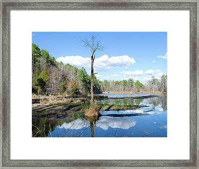 Winter Lake View Framed Print by George Randy Bass