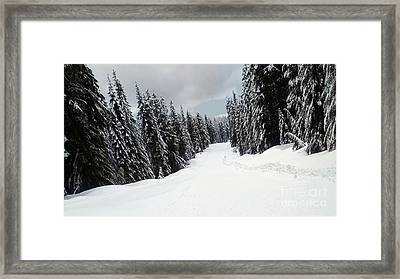 Framed Print featuring the photograph Winter Landscape by Bill Thomson