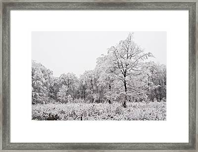 Winter Landscape Framed Print by Gabor Pozsgai