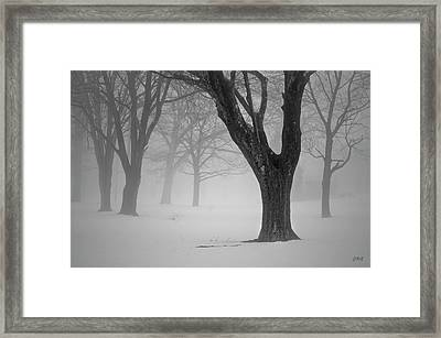 Winter Landscape V Framed Print