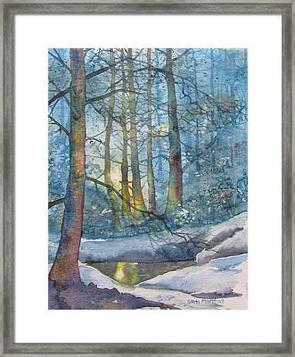 Winter Light In The Forest Framed Print