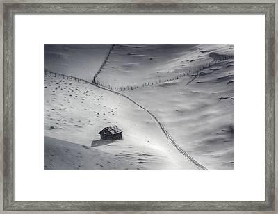 Winter Light Framed Print by Mihail Dulu