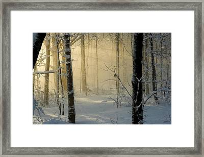Winter Light Rays Framed Print by Daniel Cadieux